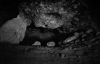 I had been living in the area where numerous bones of moa had been discovered in this cave. As a school boy I met the gruff Roger Duff whose The Moa- Hunter Period of Maori Culture (1977) remains the authoritative work.